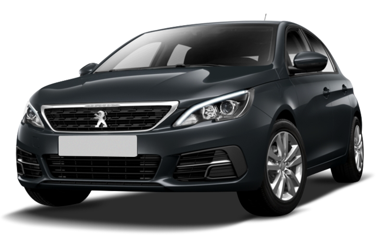 Mandataire PEUGEOT 308 BUSINESS R'